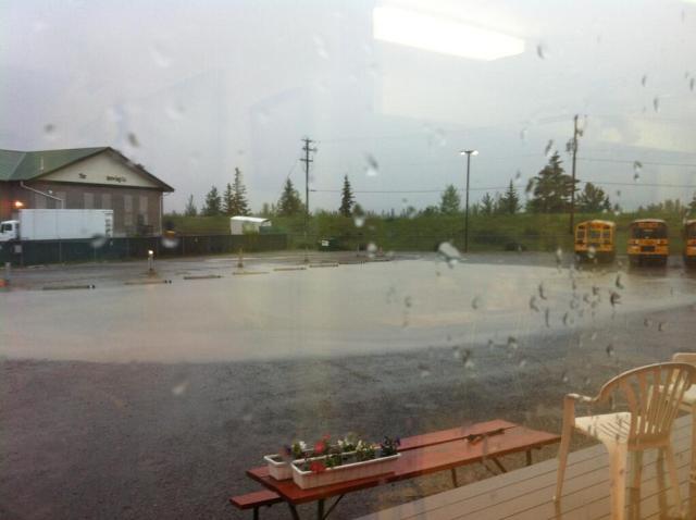 Flood buses.jpg large